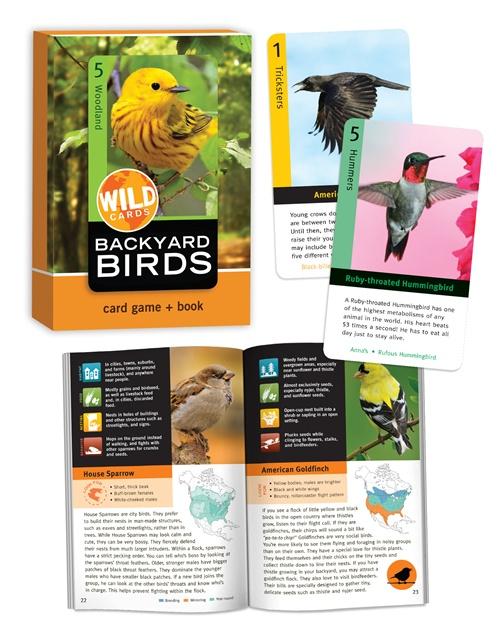 BCP_WildCards-BackyardBirds-01