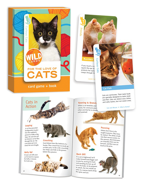 BCP_WildCards-Cats-01