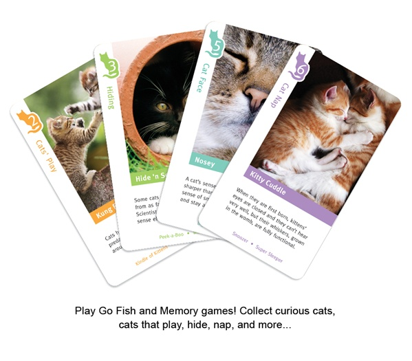 BCP_WildCards-Cats-02