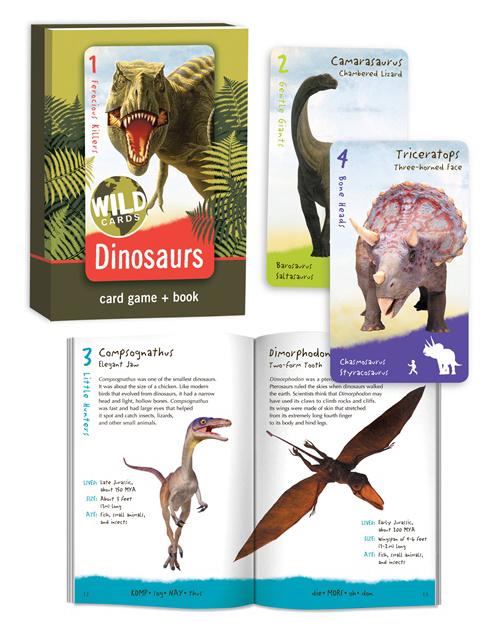 BCP_WildCards-Dinosaurs-01