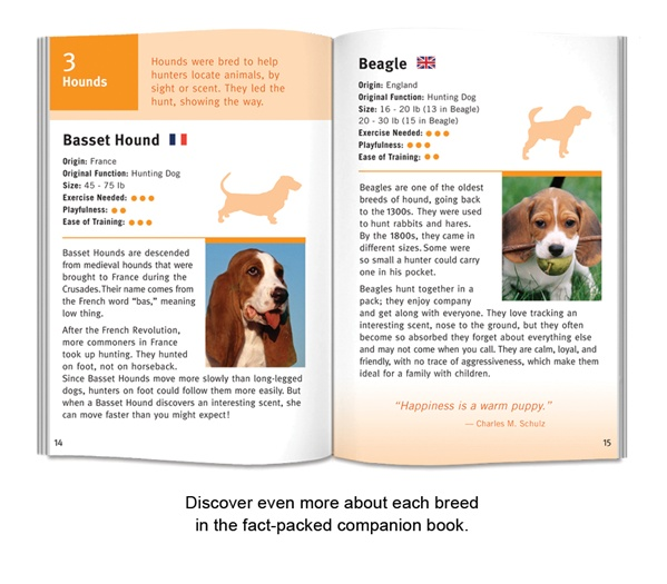 BCP_WildCards-Dogs-03